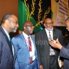 6th Biennial Jamaica Diaspora Conference 2015 117