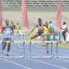 Carifta Trails14