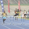 Carifta Trails19